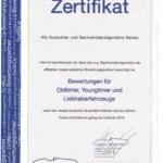 Kfz Gutachter Raiolo - Zertifikat Classic Analytics